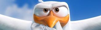 Gólyák (Storks)