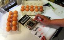 Nébih: nem emelkedik a tojás ára