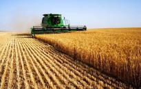 Átlagos év a mezőgazdaságban