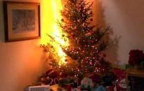 Előzzük meg a karácsonyfatüzeket!