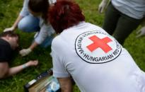 Országos önkéntes program