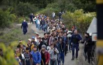 A balos svéd kormány szavazatokért engedi be a migránsokat