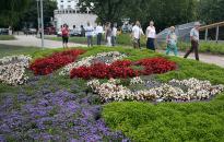 Idén is neveztünk a Virágos Magyarország versenyébe
