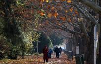 Jön az igazi őszi idő