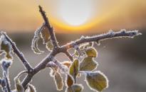 Április első napjaiban is várható fagy