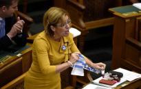 Bangóné lepatkányozta a Fidesz szavazóit
