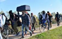 Menet közben ugráltak ki a migránsok egy kamionból, elkapták őket - videó