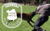 Rendőrkézen az előszállási betörők
