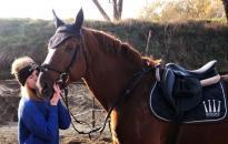 Jótét célú lovas karácsony: még lehet jelentkezni!