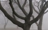 Időjárás: borult, párás, szeles napok jönnek