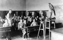 PSZ: nyílt fórum a közoktatás válságáról