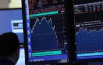 Gazdaságvédelem: akció, tervek