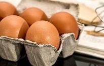 Szalmonellás tojás a Lidl üzleteiben – dunaújvárosi bázis is van a listán (FRISSÍTVE!)