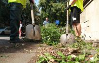 Tisztulnak a város parkolói, legutóbb az Intercisa Múzeum mögötti terület következett