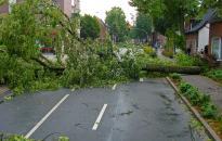 OKF: kidőlt fák és a hirtelen lehullott sok eső miatt kérték a tűzoltók segítségét