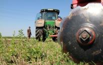 DSTV | Jó volt a termés a környéken