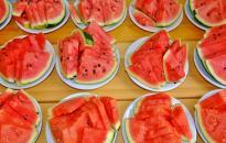 Idén 160 ezer tonna görögdinnye termett