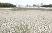 Fazekas: Magyarország környezeti állapota jelentősen javult