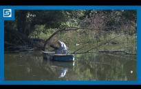 Embedded thumbnail for DSTV | Halászati perspektívák