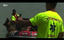 Embedded thumbnail for Hajóbaleset - Szagot fogtak a kutyák városunknál