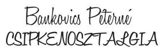 Bankovics Péterné - Csipkenosztalgia című tárlata