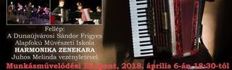 Jótékonysági harmonika koncert