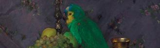 Pentelei Molnár János  festőművész magángyűjteményben lévő festményeinek kiállítása