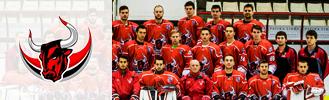 Dunaújvárosi Acélbikák–Sport Club Csíkszereda
