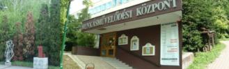 """Gubik Ágnes: """"Az én József Attilám"""""""