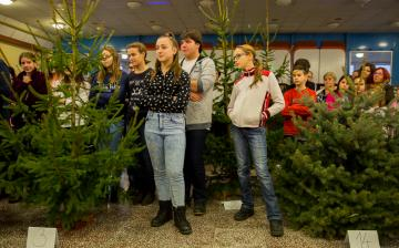 Karácsonyfa díszítők versenye - fotó: Ónodi Zoltán