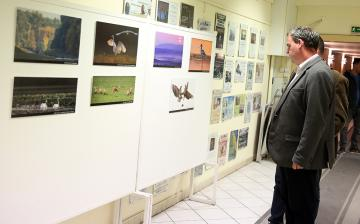 Természetfotók tárlata az MMK-ban - fotó: Sándor Judit