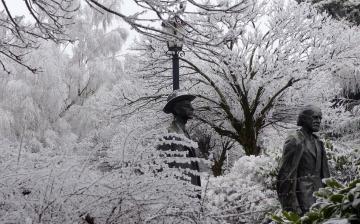 Könnyű séta a hófehérbe öltözött városban - fotó: