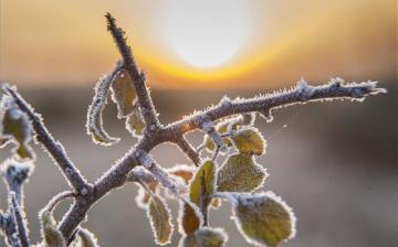 Marad a fagyos idő