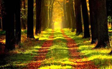 Csendes és kellemes őszi péntek