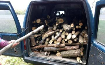 Segítő szándékkal: szemét helyett fával tüzelhetnek