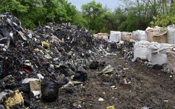 Összefogás a környezeti bűnözés ellen