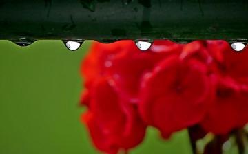 Nyárias nyitány, esős, viharos folytatás