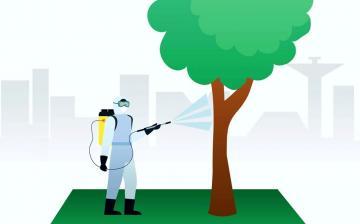 Növényvédelmi permetezés a köztereken