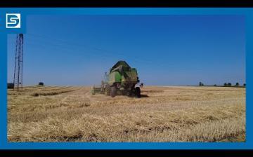 Embedded thumbnail for DSTV: javában tart már az aratás